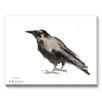 Americanflat Crow 3 Painting Print on Canvas