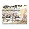 Americanflat Khristian Howell Bangalore Graphic Art Gallery Wrapped Canvas