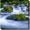 West of the Wind Outdoor Canvas Art Mossy Rocks#2 Photographic Print