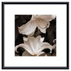 <strong>Barewalls</strong> 'White Lilies' by Rebecca Swanson Framed Photographic Print