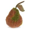 """October Hill 7"""" Moss Pear Home Accent"""