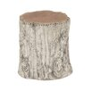 Woodland Imports Rustic and Natural Teak Aluminum Stool