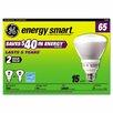 GE 15W 120-Volt Fluorescent Light Bulb