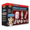 <strong>Human Anatomy</strong> by Tedco Toys