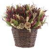 Urban Florals Holiday Spruce Hanging Plant in Basket