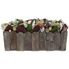 Urban Florals Spring / Everyday Coral Charm Desk Top Plant in Planter