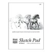 <strong>Premium Sketch Pad (Set of 48)</strong> by Bazic