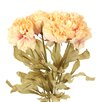 Distinctive Designs DIY Flower Artificial Dried Peony (Set of 12)