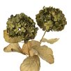 Distinctive Designs DIY Flower Artificial Everlasting Hydrangea with 3 Leaves (Set of 12)
