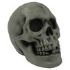 Skull Plain Halloween Decoration