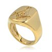 <strong>Masonic Ring</strong> by DeBuman