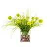 <strong>Thistle in Acrylic Water Vase</strong> by Creative Displays, Inc.
