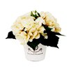 Creative Displays, Inc. Hydrangea in French Clay Pot