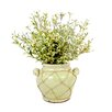 Creative Displays, Inc. Oregano in Distressed Glaze Planter with Jute Trim