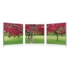 Artistic Bliss Cherry Trees 3 Piece Framed Photographic Prints Set