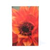 <strong>Art Wall</strong> ''Fiery Dahlia'' by Kathy Yates Photographic Print on Canvas