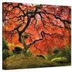 Art Wall Japanese Tree Canvas Art I by John Black