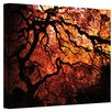 <strong>''Japanese Tree'' by John Black Photographic Print on Canvas</strong> by Art Wall
