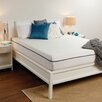 "Sealy 10"" Memory Foam Mattress"