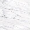"Faber Carrara Extra High Definition 18"" x 18"" Porcelain Matte Tile in White"