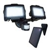 <strong>Nature Power</strong> LED Dual Lamp Outdoor Solar Security Light