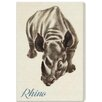"Oliver Gal ""Rhino"" by Olivia's Easel Canvas Art"