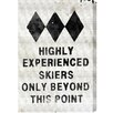 Oliver Gal 'Experienced Skiers' Graphic Art on Wrapped Canvas