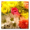 "<strong>Trademark Fine Art</strong> ""Spring Bouquet"" by Amy Vangsgard Painting Print on Canvas"