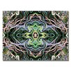 <strong>Trademark Fine Art</strong> 'Kaleiodoscope' by Kathie McCurdy Painting Print on Canvas
