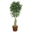 Laura Ashley Home Tall Willow Ficus Tree in Planter