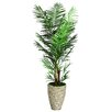 Laura Ashley Home Tall Areca Palm Tree in Planter