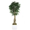 Laura Ashley Home Tall Willow Ficus Trunks Tree in Planter