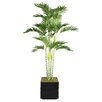 <strong>Tall Palm Tree in Planter</strong> by Laura Ashley Home
