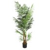 Laura Ashley Home Areca Palm Tree in Pot