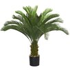 Laura Ashley Home Cycas Palm Tree in Pot
