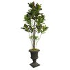 <strong>Laura Ashley Home</strong> Tall Croton Multiple Trunks Tree in Urn