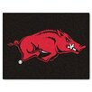 FANMATS Collegiate All-Star Arkansas Area Rug