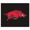 FANMATS Collegiate Arkansas Tailgater Outdoor Area Rug