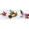 iCanvas Panoramic Leaves Photographic Print on Canvas