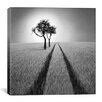 iCanvas 'Listen to Wisdom' by Ben Heine Photographic Print on Canvas