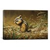 iCanvas 'Chipmunk' by Ron Parker Graphic Art on Canvas