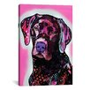 iCanvas 'Black Lab' by Dean Russo Graphic Art on Canvas
