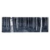 iCanvas Panoramic Birch Trees in a Forest, Finland Photographic Print on Canvas