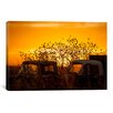 <strong>'Beauty After Life' by Dan Ballard Photographic Print on Canvas</strong> by iCanvasArt