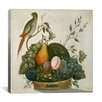 "iCanvas ""Basket of Fruit with Parrot"" Canvas Wall Art by Jung Ho Hwang"