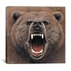 "iCanvasArt ""Bear 2"" Canvas Wall Art by Harro Maass"