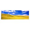 iCanvas Panoramic Canola Fields Washington State Photographic Print on Canvas