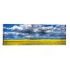 iCanvasArt Panoramic 'Yellow and Blue' by Bob Larson Photographic Print on Canvas
