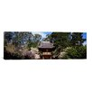 <strong>iCanvasArt</strong> Panoramic Cherry Blossom Trees in a Garden, Japanese Tea Garden, Golden Gate Park, San Francisco, California Photographic Print on Canvas
