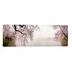 iCanvasArt Panoramic Cherry Blossoms at the Lakeside, Washington, D.C Photographic Print on Canvas